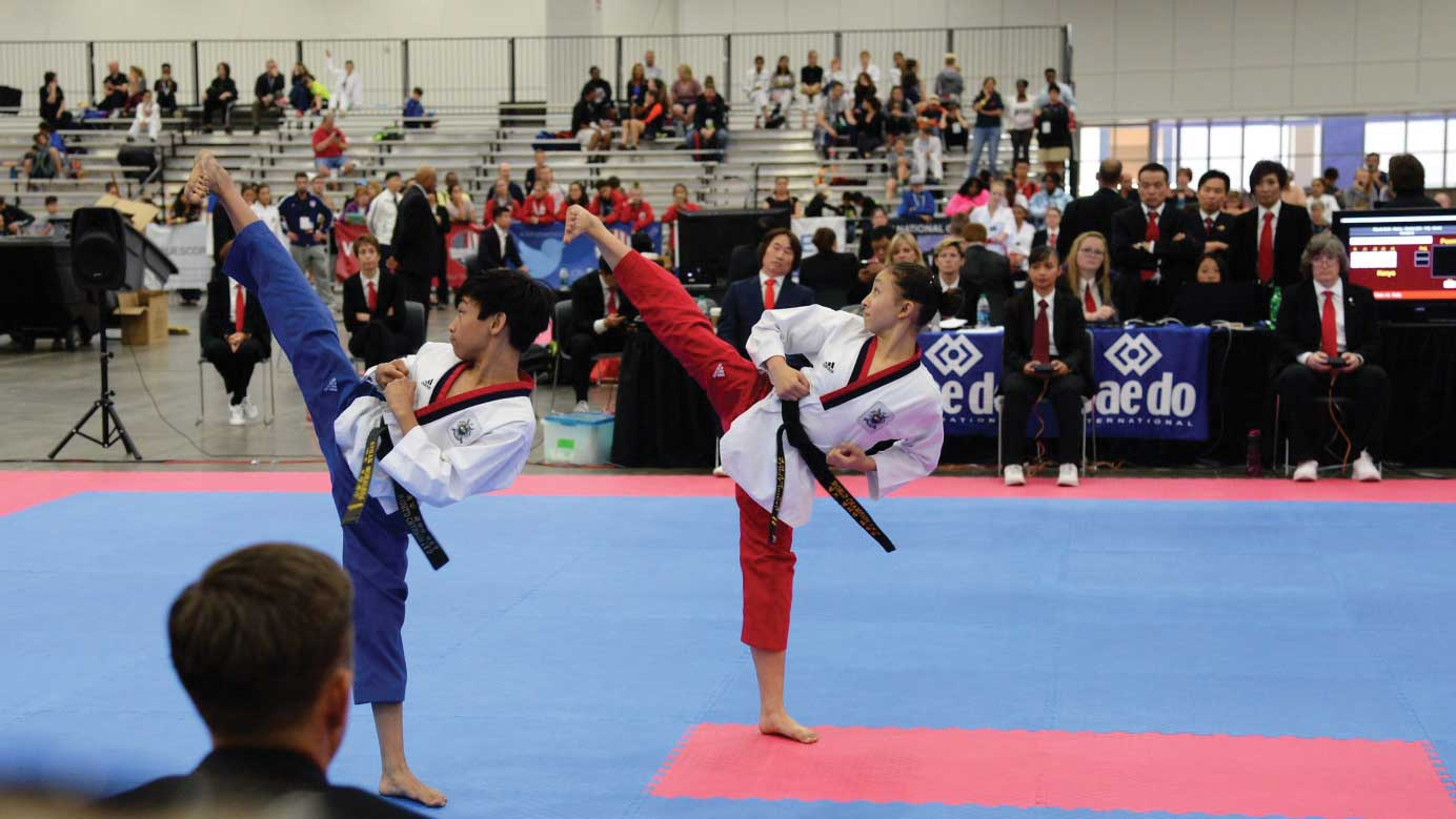 Woodbridge Taekwondo Students Successful at USAT 2017 National Championship