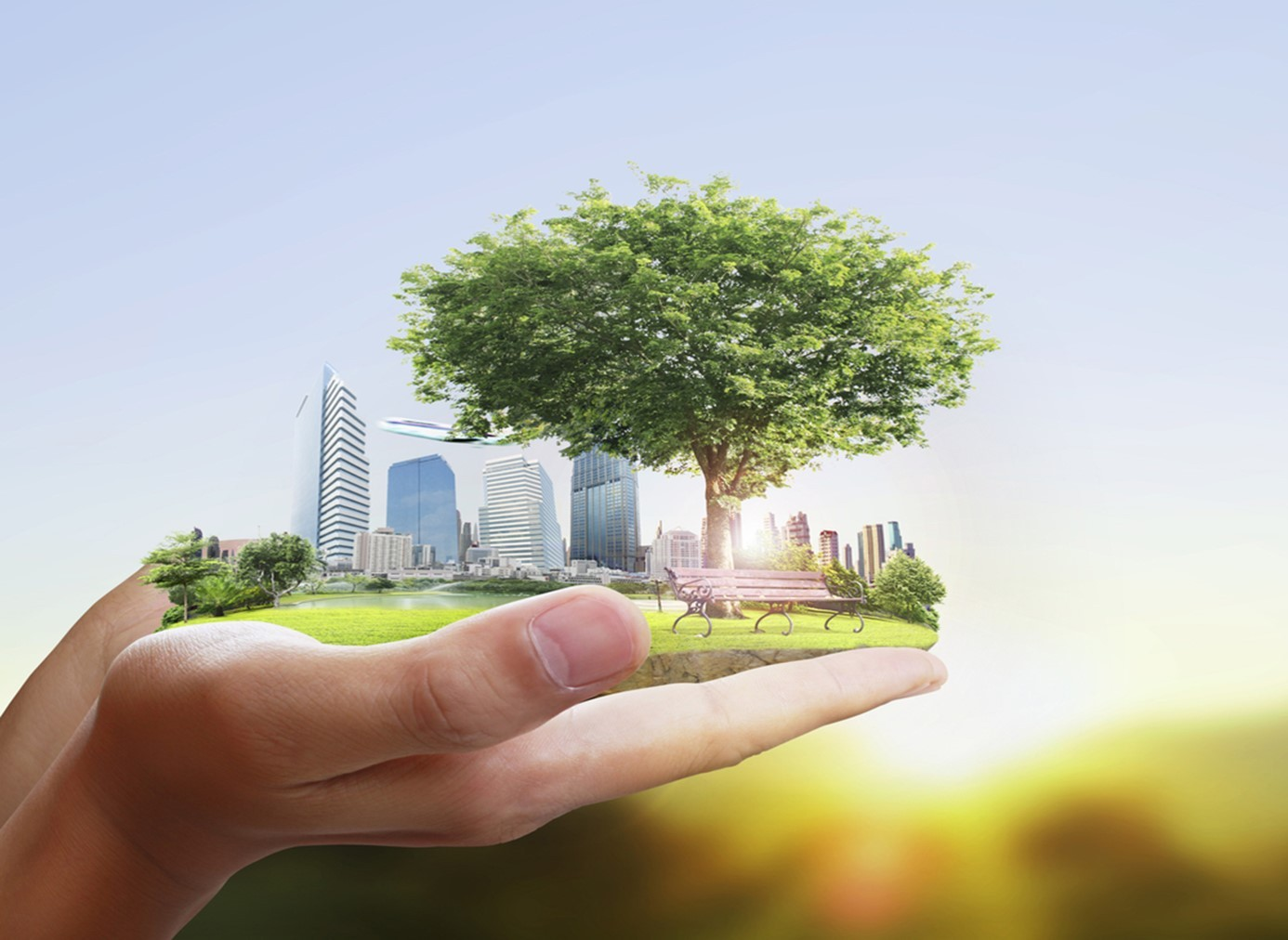 Local Committee to Keep Sustainability Efforts in the Public View