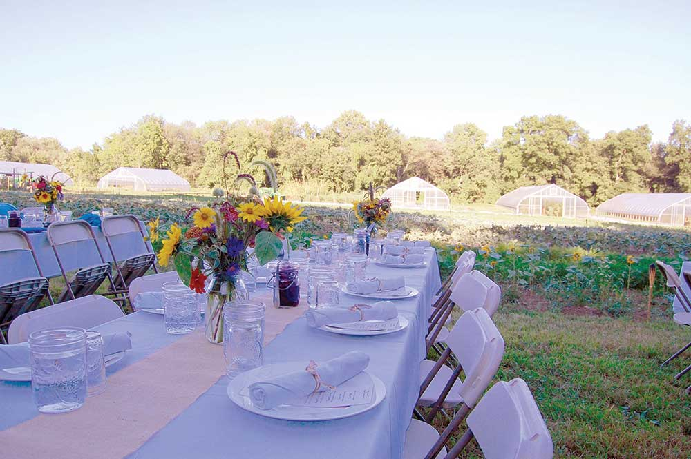 Massaro Community Farm - Dinner on the Farm 2018
